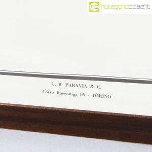 Paravia, tavola botanica n (8)