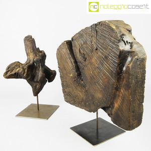 Legni fossili con base (2)