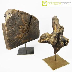 Legni fossili con base (3)